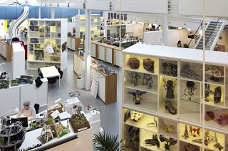 まるでショールームのようなレゴ社のオフィス